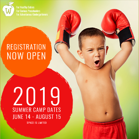 Wonderland Preschool 2019 Summer Camp Registration - Spaces are limited. Enroll today by calling 562-866-4919.
